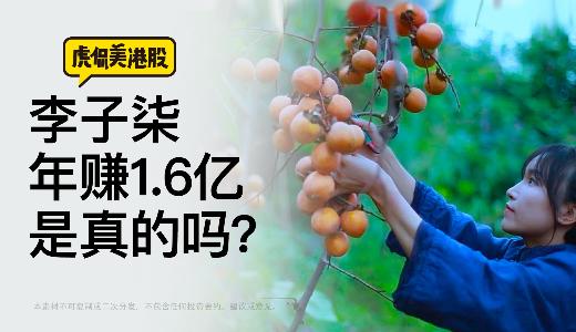 李子柒年赚1.6亿是真的吗?